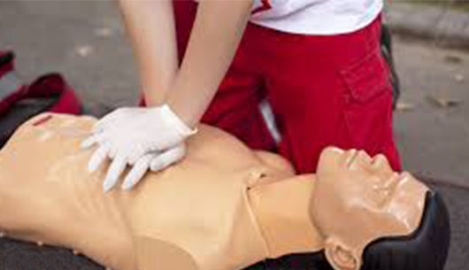 Basic First Aid/CPR